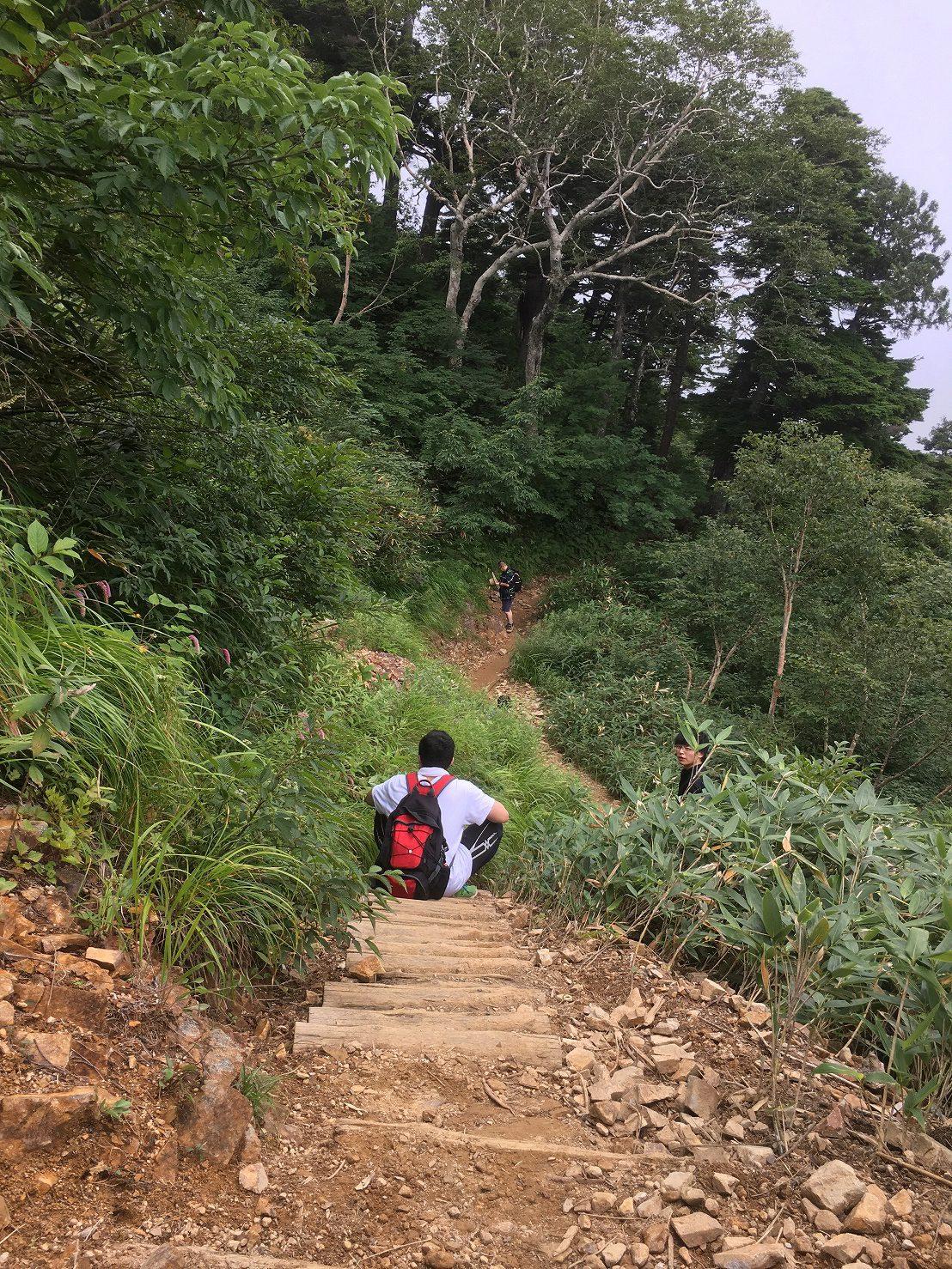 下山は容赦なく、3時間程度で下るペースです。